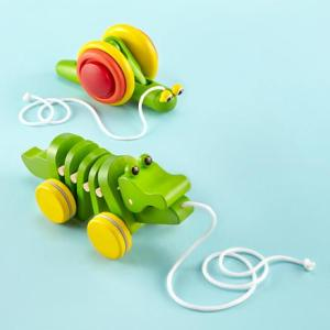 Baby Pull Toys